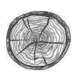 round wooden cross section with tree rings vector image