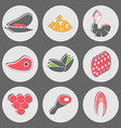Seafood and Fast Food Snacks vector image