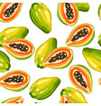seamless pettern with papaya isolated on white vector image