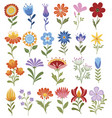 set stylized flowers collection decorative vector image