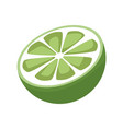 slice lemon citrus fruit vitamins vector image vector image