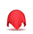 sphere covered with red silk fabric on white backg vector image vector image