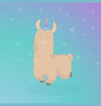 cartoon llama cute lama alpaca card on colorful vector image vector image