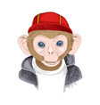 hand drawn portrait of monkey with accessories vector image