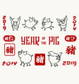 pig 2019 chinese new year symbol vector image