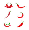 red hot natural chili icon vector image