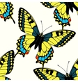 Seamless pattern with colorful machaon butterflies vector image