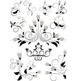 Variants flourishes decorative details vector image vector image