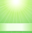 Green sunny background with place for text vector image