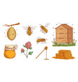 hand drawn honey bee beekeeper engraving bees vector image