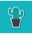 office cactus design vector image