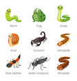 set of animals in rainy season vector image vector image