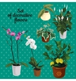 Set of potted plants with flowers vector image vector image
