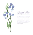 sprig of forget-me vector image