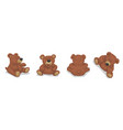 brown bear cute soft toy set for children vector image