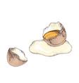 eggs with broken egg and yolk vector image vector image