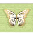 Lace Butterfly on texture background vector image vector image