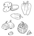 vegetables and fruits watermelon and pepper vector image vector image