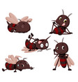 collection of mosquito cartoon vector image vector image