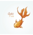 goldfish vector image vector image