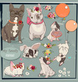 set with cute bulldogs family vector image vector image