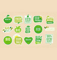 vegetarian labels eco healthy fresh food tags vector image vector image