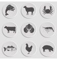 Icons Set -Animal Meat Seafood vector image