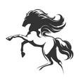 running horse silhouette emblem vector image