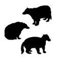 Badger set vector image vector image