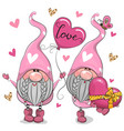 cartoon valentine gnomes isolated on a white vector image vector image