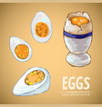 digital detailed line art cooked egg vector image