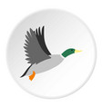 Duck icon circle vector image