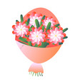 elegant fresh bouquet of beautiful flowers in mate vector image vector image