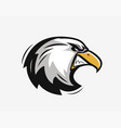 head an angry eagle sports mascot vector image vector image
