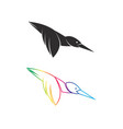 hummingbird design on white background easy vector image vector image