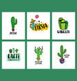 set funny cacti cards and lettering vector image vector image