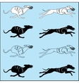 Set of silhouettes running dog whippet breed