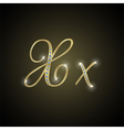 Shiny alphabet X of gold and diamond vector image vector image
