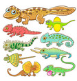 universal lizard cartoon set vector image