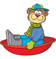 Cartoon teddy bear on a sled vector image vector image