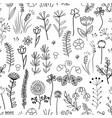 floral seamless pattern vintage background vector image vector image