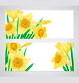 horizontal banners with high detailed yellow vector image vector image