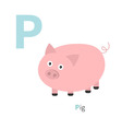 Letter P Pigt Zoo alphabet English abc with vector image vector image