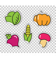 stickers with images of vegetables cabbage vector image vector image