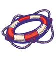 lifebuoy color vector image