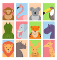 cute square avatars with wild animals vector image vector image