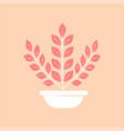 home plant in pot icon minimal modern style vector image vector image