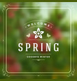 spring typographic greeting card or poster vector image vector image