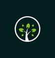 tree culture circle creative naturally logo vector image vector image