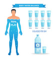 water balance poster vector image